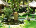 Thiết kế, thi công cảnh quan sân vườn
