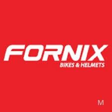 Công Ty TNHH Fornix