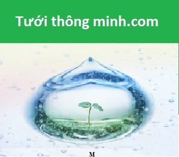 Công Ty TNHH VHL