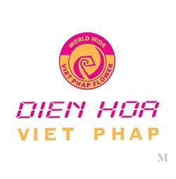 Công TY TNHH Điện Hoa Toàn Cầu Việt Pháp