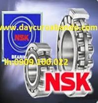 Bạc đạn NSK 6311-2ZC3