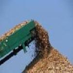 Băng tải chuyền dăm gỗ