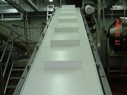 Băng tải PU,PVC màu trắng dán gờ chắn ở giữa
