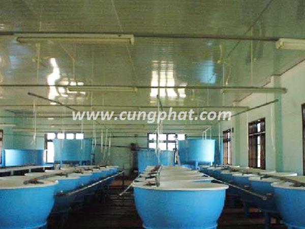 Bể Nuôi Trồng Thủy Sản Composite FRP