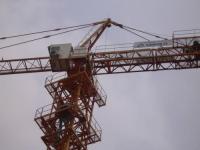 Cẩn cẩu tháp SCM