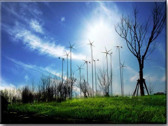 Chuyên phân phối Tua bin gió
