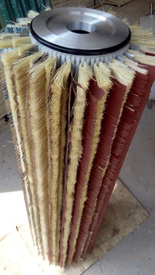 trúc nhám sơ dừa