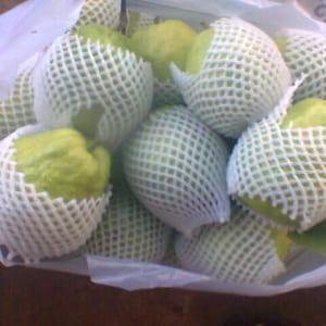 Lưới xốp bọc trái cây