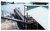 Máng sản xuất than