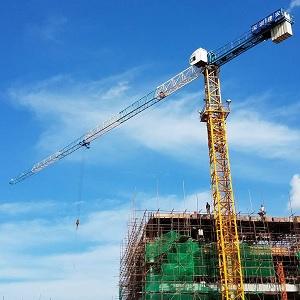 Cho thuê cẩu tháp TCT