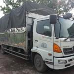 Cho thuê xe tải 7 tấn