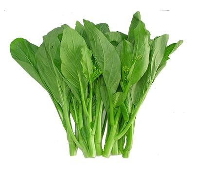 Giống rau cải