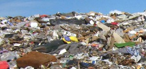 Hợp chất sinh học xử lý rác thải và nước rỉ rác – Rydall OE