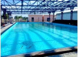 Bể bơi trường quốc tế Singapo