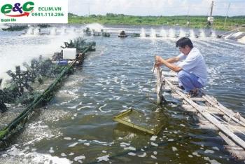 Xử lý nước thải nước Ao nuôi tôm, nuôi cá