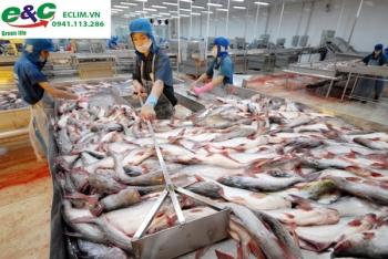 Xử lý nước thải ngành chế biến Thủy Hải
