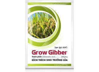 Phân bón lúa Grow Gibber