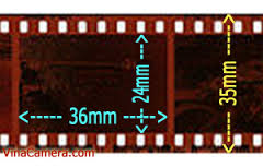 Sản xuất phim truyện nhựa