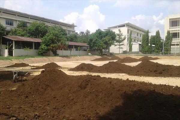 Bán đất thịt trồng cây