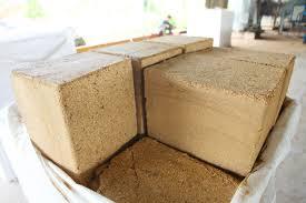 Mùn cưa gỗ thông ép khối xuất khẩu