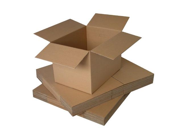 Bao bì carton cao cấp