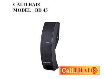 CALITHAI8 MODEL: BD 45