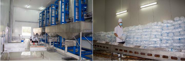 Xưởng nước đá 100 tấn ngày