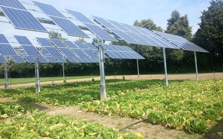 Điện mặt trời với nông nghiệp