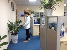 Tạp vụ văn phòng