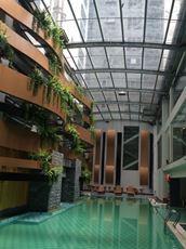 Kết cấu thép mái bể bơi