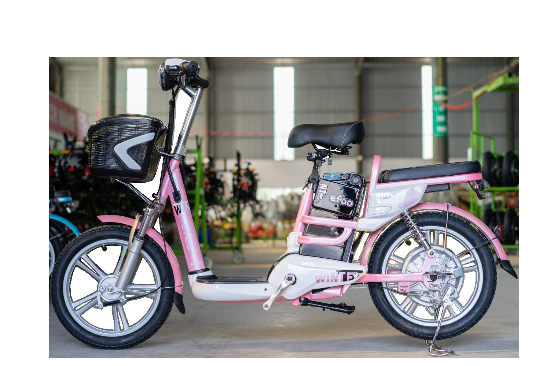 Xe đạp điện Yadea Winter