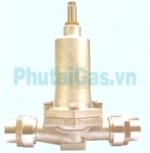 Điều áp tiết kiệm chịu lạnh bồn lỏng DYJ 40-50
