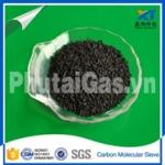 Hạt Carbon tách phân tử (CMS)