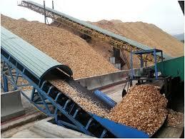 Dây chuyền sản xuất dăm gỗ