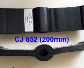 CJ 852 (O200)