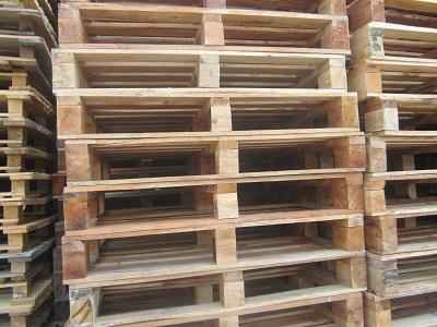 Cung cấp pallet gỗ