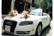 Cho thuê xe cưới BMW