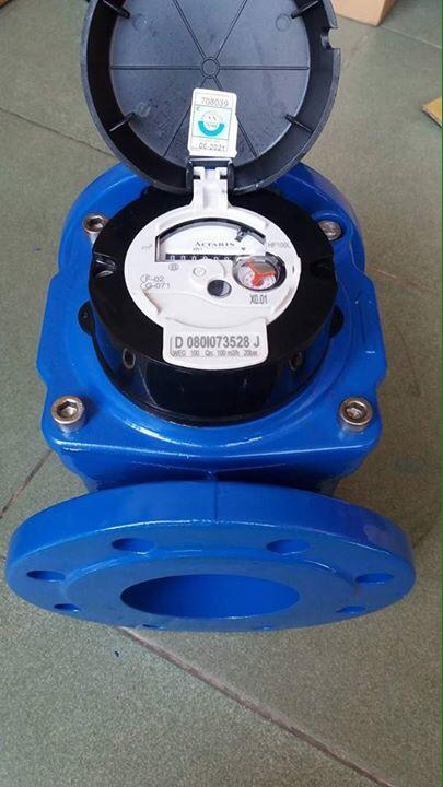 Đồng hồ nước Woltex-ACTARIS DN100