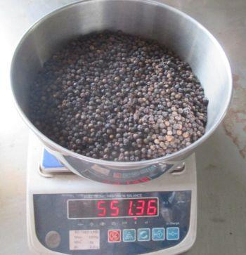 Black pepper (MC, ASTA, CLEAN)