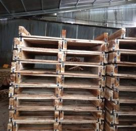 Pallet gỗ Ý Khang