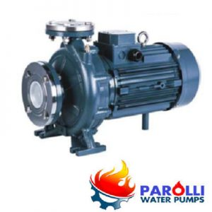 Máy bơm Parolli PST 40-250/110