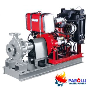 Máy bơm Parolli PD nhập khẩu