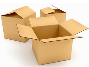 Thùng carton - 5