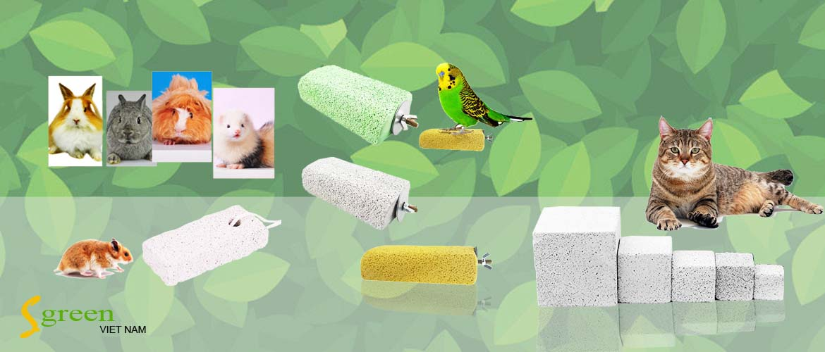 Sgreen pet toys