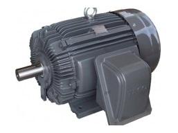Động cơ điện Teco Max E2