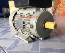 Động cơ điện Tatung 1 phase