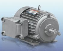 Motor Tatung IEC EX