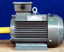 Motor Teco 3 pha