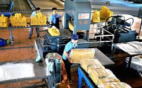 Sản xuất cao su