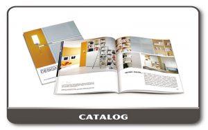 Catalog - Brochuse - Tạp chí